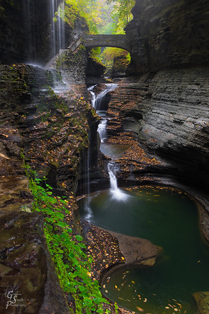 Magic of Watkins Glen