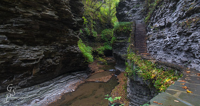Hiking along Watkins Glen