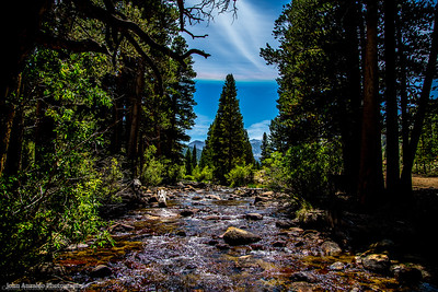 East Fork Rock Creek 2015