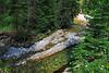 Flathead River, in Flathead Townsite