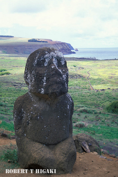 Tukuturi: I shot this Moia before the park rangers built a fence around it. You can barely see Ahu Tongariki in the background.
