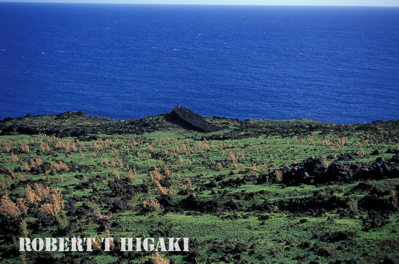 Ahu A Tanga: If you have the time, try the north coast hike. Not too many people come to the island- let alone doing this hike. You will be among a very select number of people to see this part of the island. If you are lazy, you can do this by horseback.