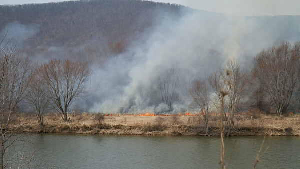 Wildfire on the Allegheny riverbank