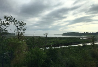 New Brunswick shoreline