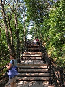 Steps up to Mont Royal, Montreal.