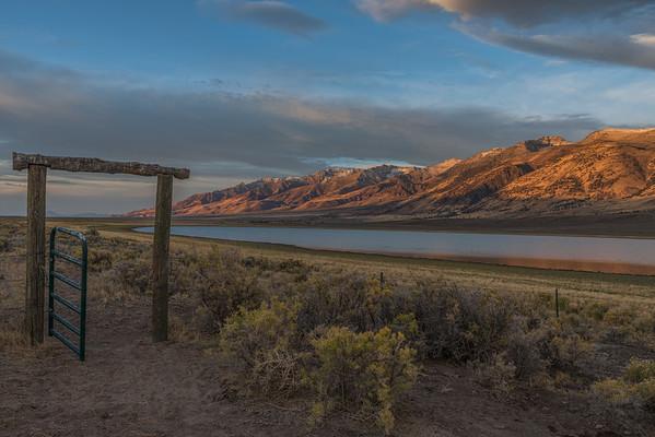 Mann Lake