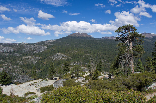 View from our favorite (and the only) rest stop near the top of Sonora Pass.