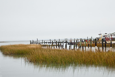 Chincoteague Island, VA (IMG_0736)