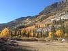 Surveyors Meadow Bishop Canyon