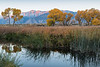 owens valley-3847