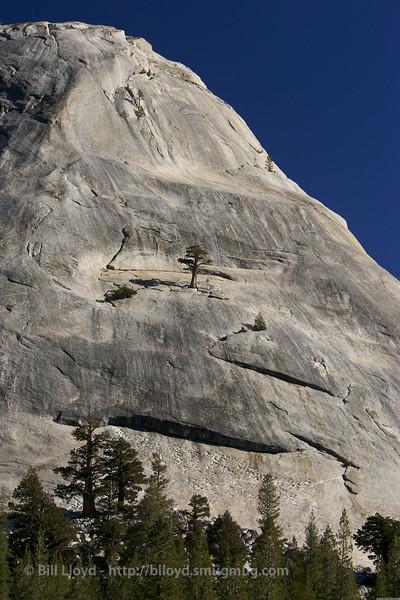 Eastern Sierra 2006