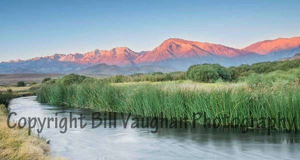 Owens River, Sierra Nevada Background, at sunrise