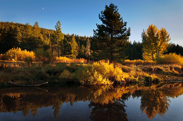 """""""Reflections in the Eastern Sierra""""  This was some of the fall colors across in the Eastern Sierras. The aspens and brush really lit up with the sun going down at sunset.  The water was nice and still with the reflections in this stream.  The tiny little moon was an added bonus low in the sky!  Nothing like a moonrise, fall colors and reflections coming together!"""