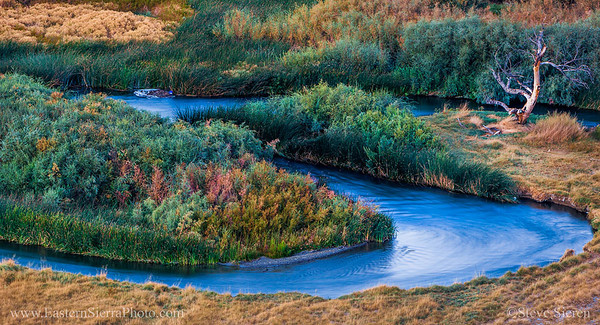 Owens_River_Bends_Eastern_Sierra_Lone_Tree