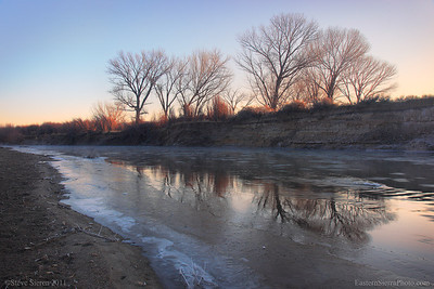 Cottonwood trees reflecting in the Carson River, Nevada