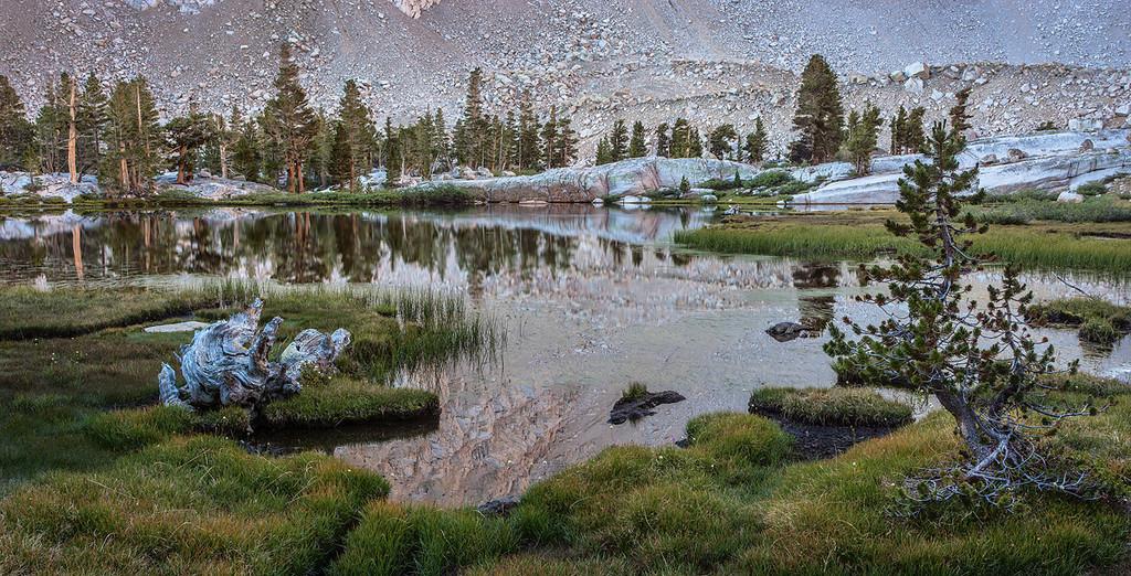 Grass Lake Eastern Sierra, John Muir Wilderness