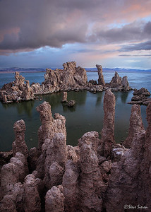 Subtle Morning Mono Lake