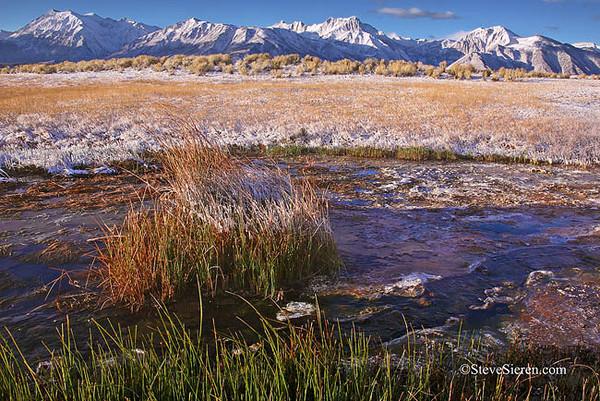 Alkalie Fields Sierra Nevada