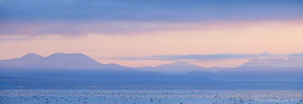 Pastoral Sea Mono Lake at dawn