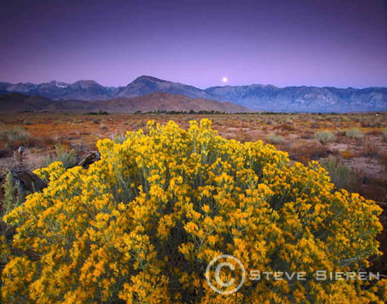 Moonset Wheeler Crest Bishop, California