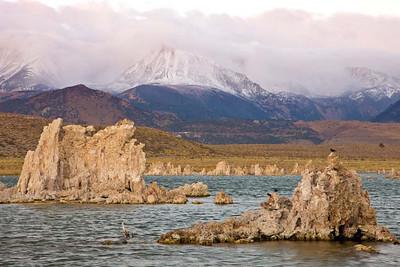 Mono Lake Morning
