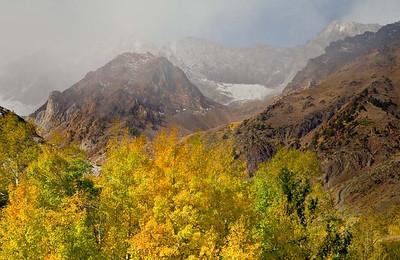 The McGee Mountains