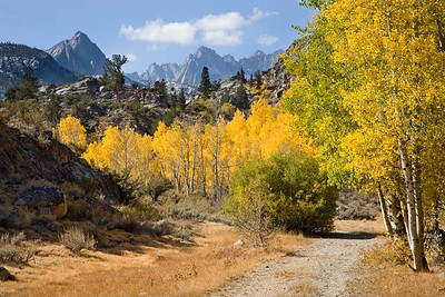 Trails leading to Inyo National Forest