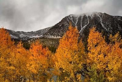 Fall Colors in Rock Creek Lake