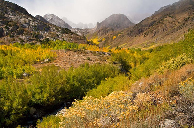 The McGee Creek