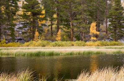Weir Lake