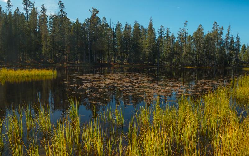 Lake Siesta