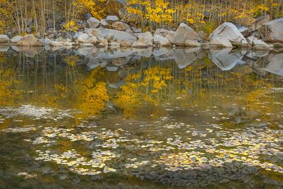 Aspendell Pond
