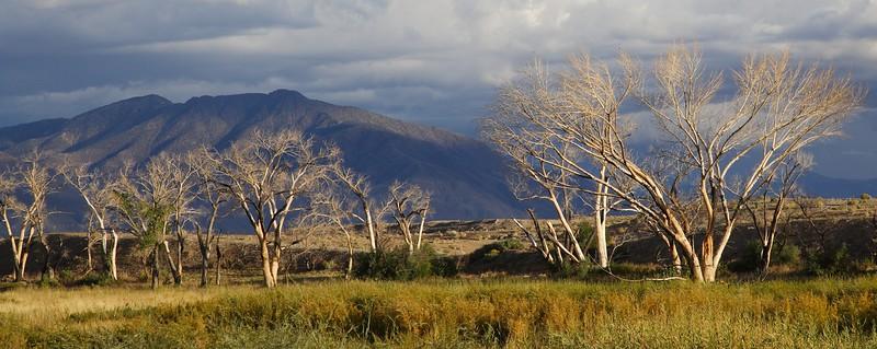 East of Bishop, Owens  Valley