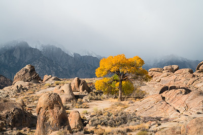 Alabama Hills Fall 2017-5