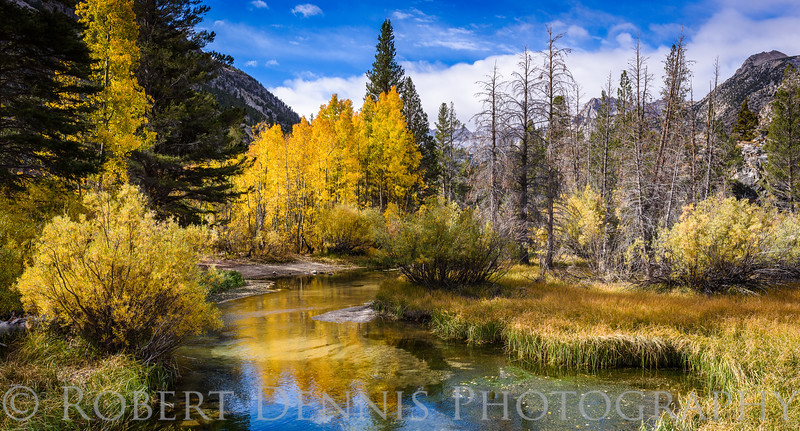 Fall in the Eastern Sierras