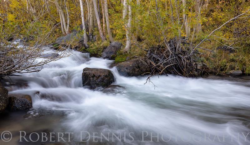 Eastern Sierra, South Bishop Creek