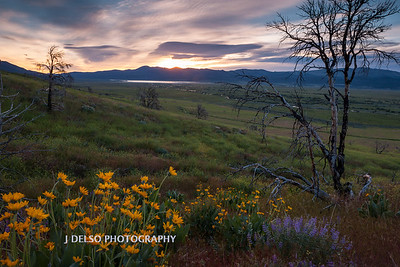 Bridgeport Valley Sunrise-1