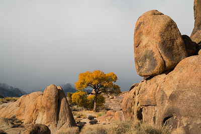 Alabama Hills Fall 2017-4