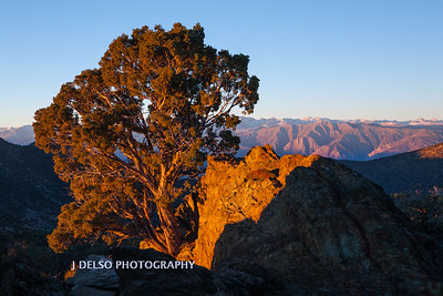 Sierra View Sunrise Fall 2015-2