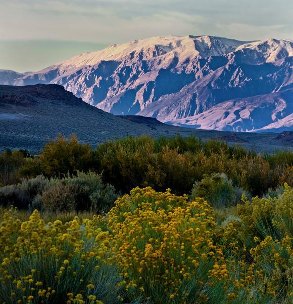 Sunset, eastern sierra
