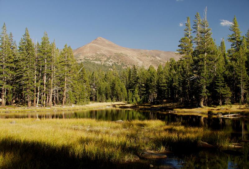Below Tioga Pass, Yosemite