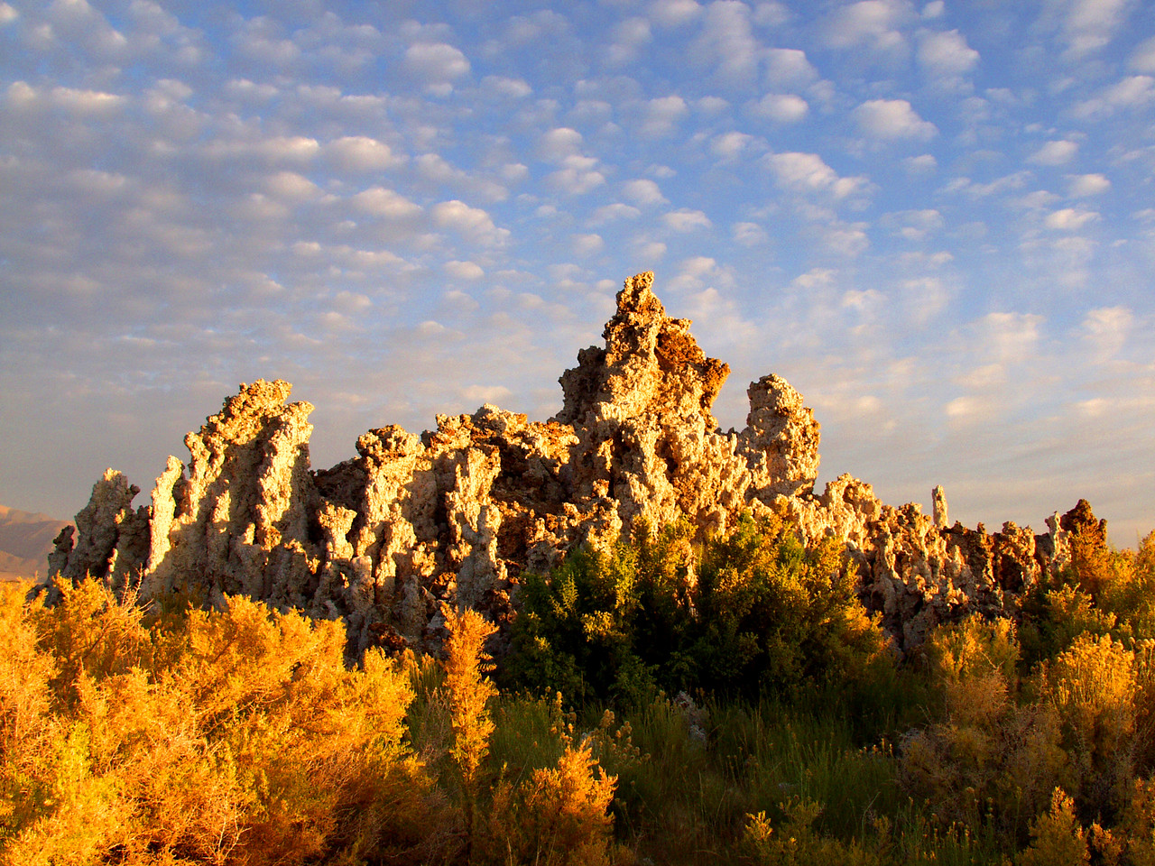Mono Lake tufa formations