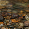 Pretty rocks and moving stream