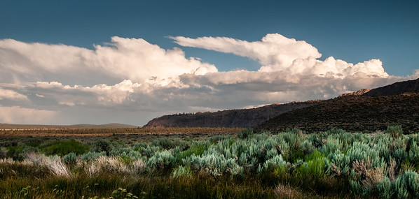 Bellowing Cloulds over Mono Lake