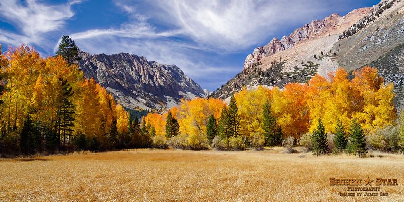 Fall Meadow at North Lake