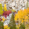 Colorful Fall Scene On A Cliff Near South Lake