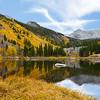 Fall Colors Reflecting InA Beaver Pond