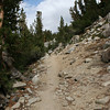 A look at the trail on the way back from Bishop Pass.