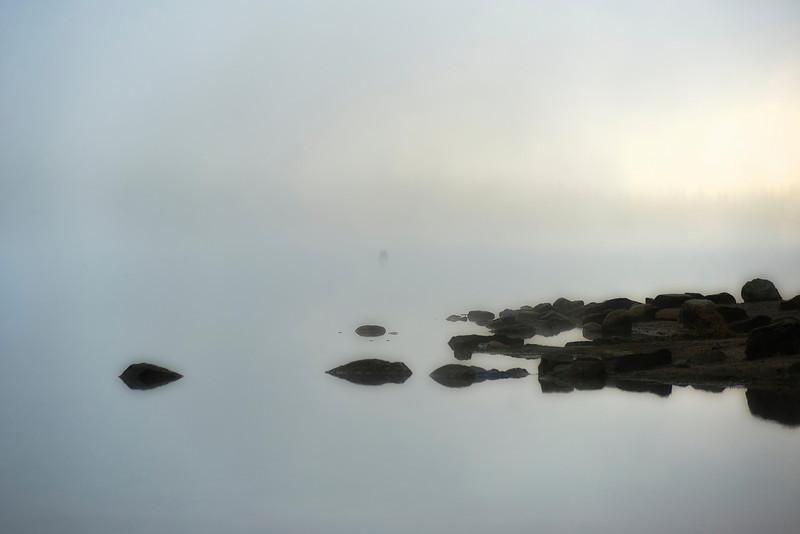 Tenaya Lake Fog