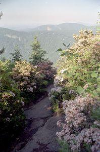 Whiteside Mountain, North Carolina, June 2001
